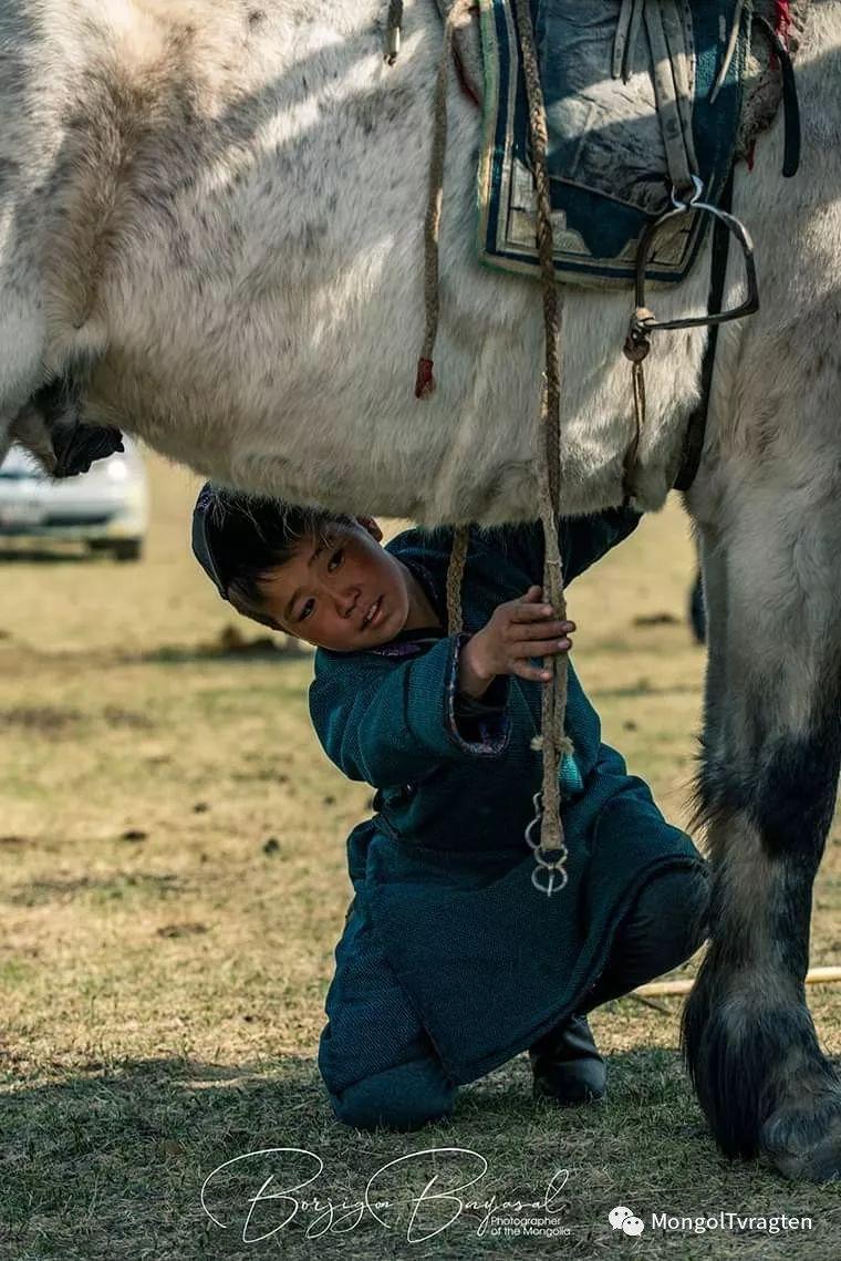 ᠮᠣᠩᠭᠣᠯ ᠮᠣᠷᠢ- ᠭ᠂ ᠪᠠᠶᠠᠰᠣᠯ 第10张 ᠮᠣᠩᠭᠣᠯ ᠮᠣᠷᠢ- ᠭ᠂ ᠪᠠᠶᠠᠰᠣᠯ 蒙古文化