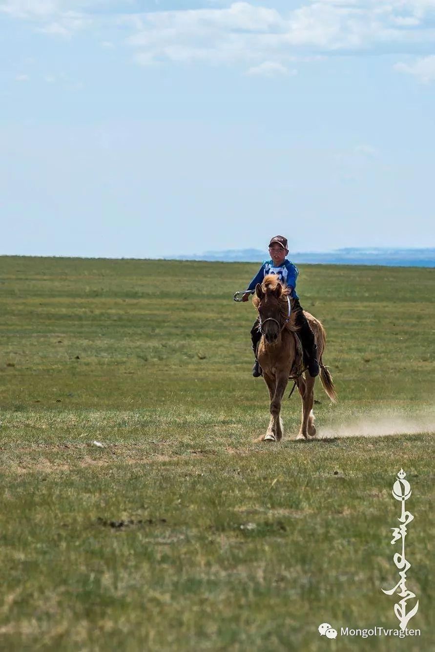 ᠮᠣᠩᠭᠣᠯ ᠮᠣᠷᠢ- ᠭ᠂ ᠪᠠᠶᠠᠰᠣᠯ 第23张 ᠮᠣᠩᠭᠣᠯ ᠮᠣᠷᠢ- ᠭ᠂ ᠪᠠᠶᠠᠰᠣᠯ 蒙古文化