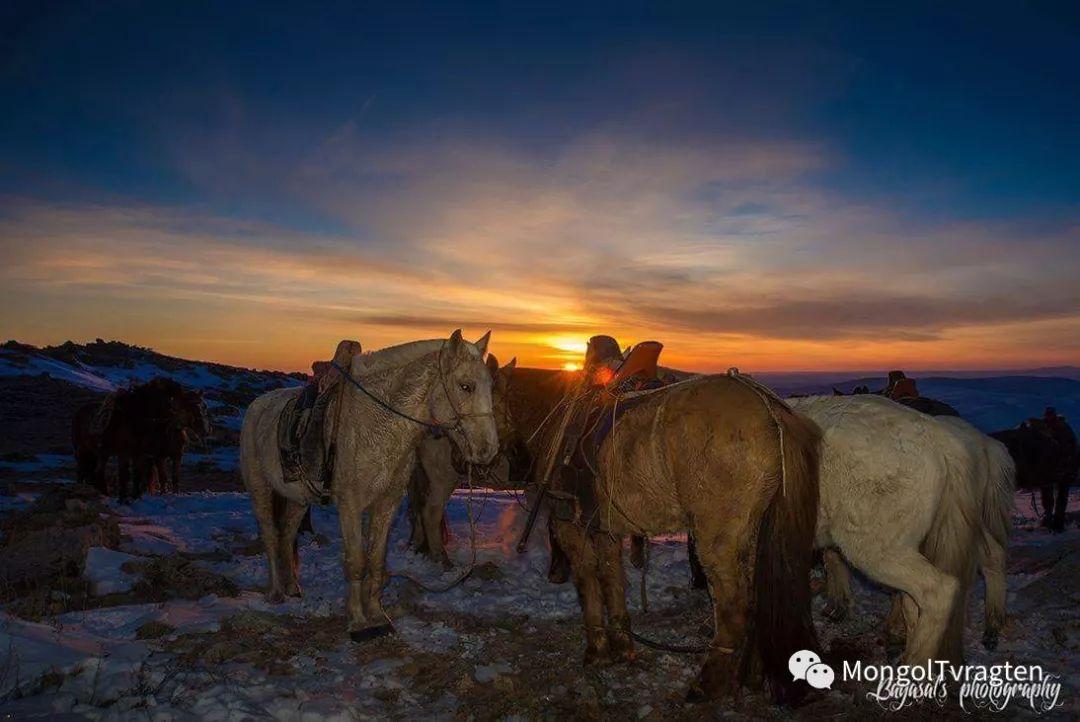 ᠮᠣᠩᠭᠣᠯ ᠮᠣᠷᠢ- ᠭ᠂ ᠪᠠᠶᠠᠰᠣᠯ 第29张 ᠮᠣᠩᠭᠣᠯ ᠮᠣᠷᠢ- ᠭ᠂ ᠪᠠᠶᠠᠰᠣᠯ 蒙古文化