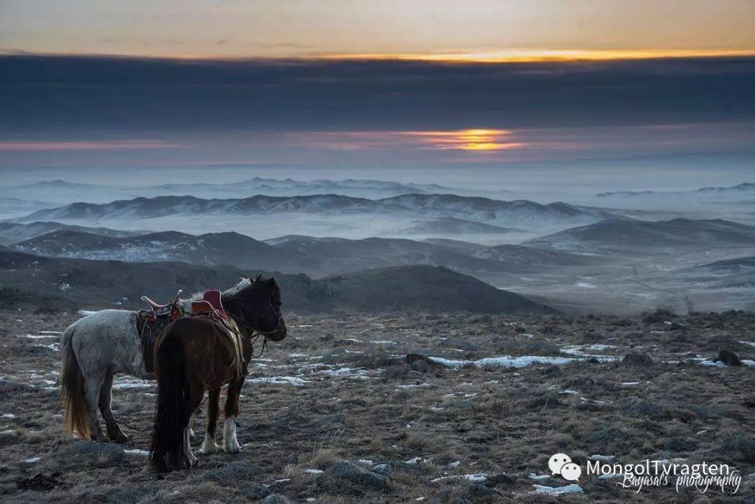 ᠮᠣᠩᠭᠣᠯ ᠮᠣᠷᠢ- ᠭ᠂ ᠪᠠᠶᠠᠰᠣᠯ 第1张 ᠮᠣᠩᠭᠣᠯ ᠮᠣᠷᠢ- ᠭ᠂ ᠪᠠᠶᠠᠰᠣᠯ 蒙古文化