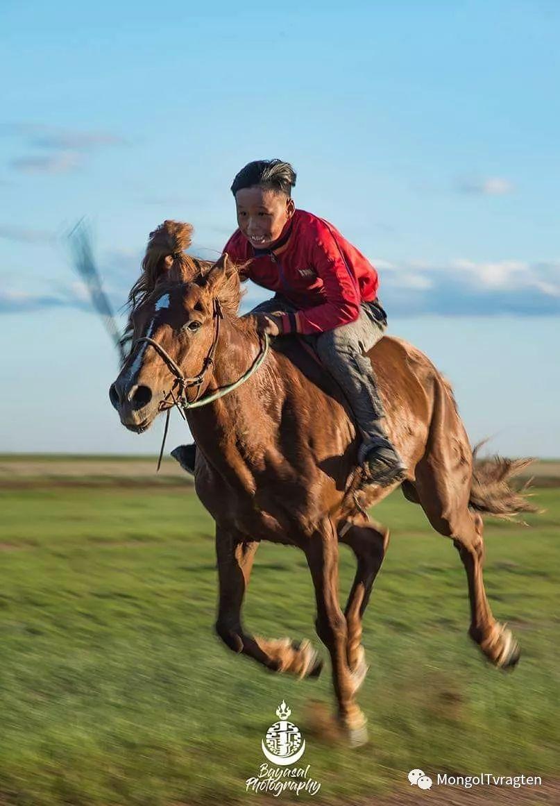 ᠮᠣᠩᠭᠣᠯ ᠮᠣᠷᠢ- ᠭ᠂ ᠪᠠᠶᠠᠰᠣᠯ 第3张 ᠮᠣᠩᠭᠣᠯ ᠮᠣᠷᠢ- ᠭ᠂ ᠪᠠᠶᠠᠰᠣᠯ 蒙古文化