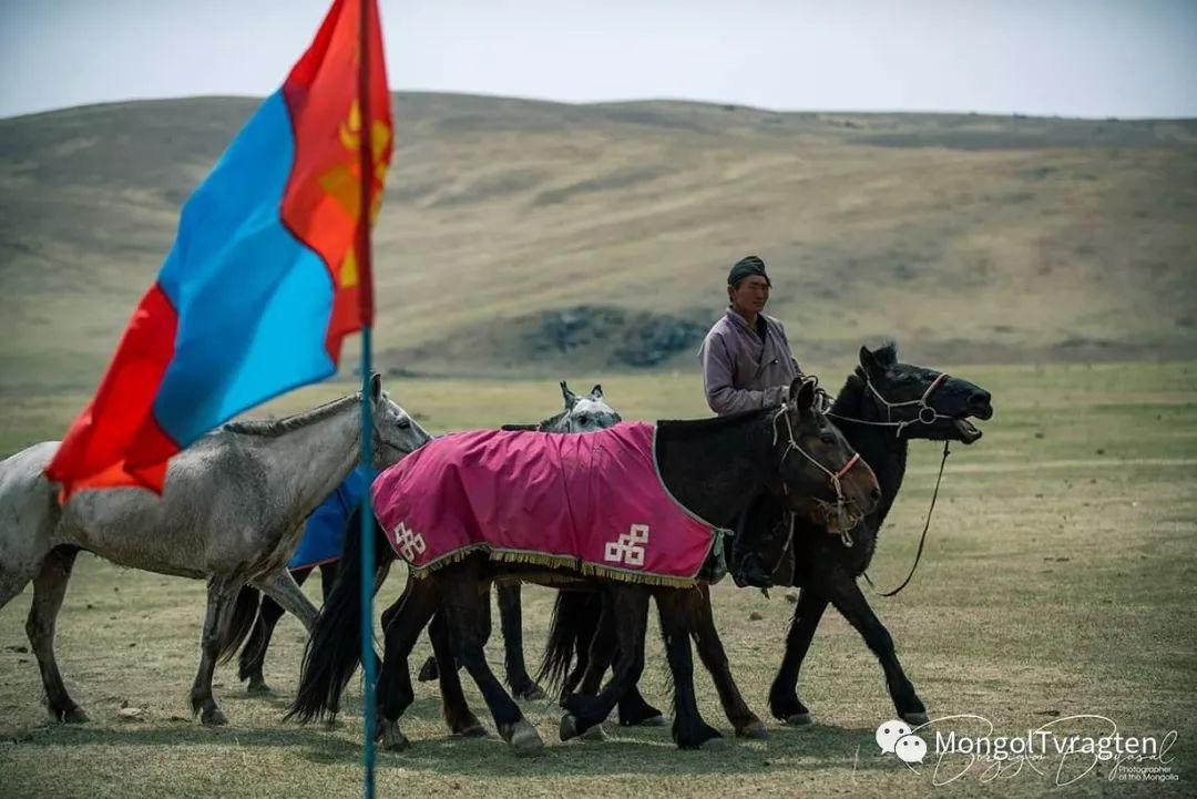 ᠮᠣᠩᠭᠣᠯ ᠮᠣᠷᠢ- ᠭ᠂ ᠪᠠᠶᠠᠰᠣᠯ 第9张 ᠮᠣᠩᠭᠣᠯ ᠮᠣᠷᠢ- ᠭ᠂ ᠪᠠᠶᠠᠰᠣᠯ 蒙古文化