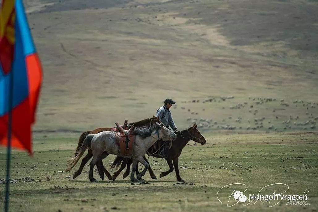 ᠮᠣᠩᠭᠣᠯ ᠮᠣᠷᠢ- ᠭ᠂ ᠪᠠᠶᠠᠰᠣᠯ 第12张 ᠮᠣᠩᠭᠣᠯ ᠮᠣᠷᠢ- ᠭ᠂ ᠪᠠᠶᠠᠰᠣᠯ 蒙古文化