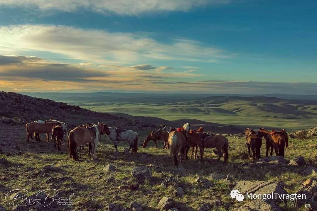 ᠮᠣᠩᠭᠣᠯ ᠮᠣᠷᠢ- ᠭ᠂ ᠪᠠᠶᠠᠰᠣᠯ 第17张 ᠮᠣᠩᠭᠣᠯ ᠮᠣᠷᠢ- ᠭ᠂ ᠪᠠᠶᠠᠰᠣᠯ 蒙古文化
