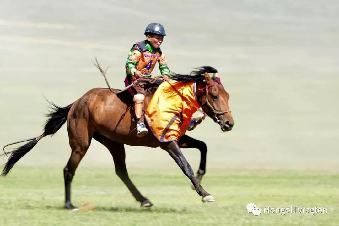 ᠮᠣᠩᠭᠣᠯ ᠨᠠᠭᠠᠳᠣᠮ 那达慕 第22张 ᠮᠣᠩᠭᠣᠯ ᠨᠠᠭᠠᠳᠣᠮ 那达慕 蒙古文化