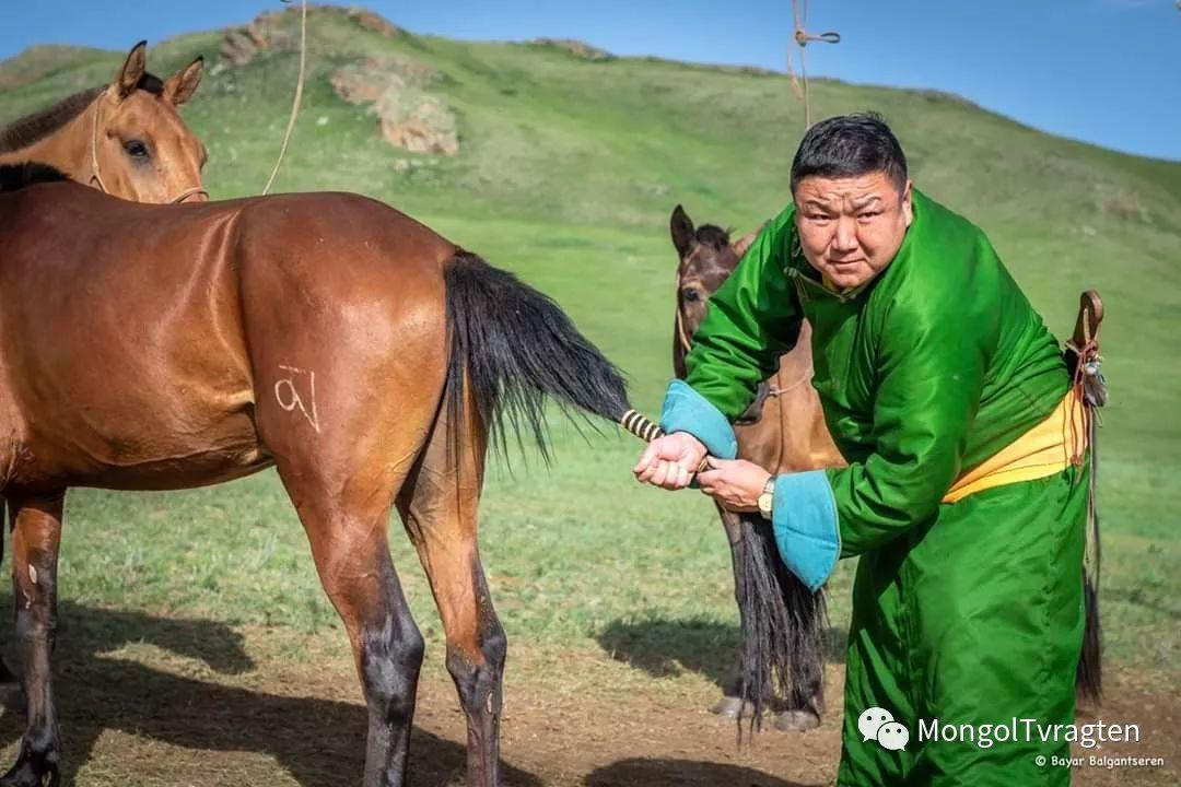 ᠮᠣᠩᠭᠣᠯ ᠨᠠᠭᠠᠳᠣᠮ 那达慕 第59张 ᠮᠣᠩᠭᠣᠯ ᠨᠠᠭᠠᠳᠣᠮ 那达慕 蒙古文化