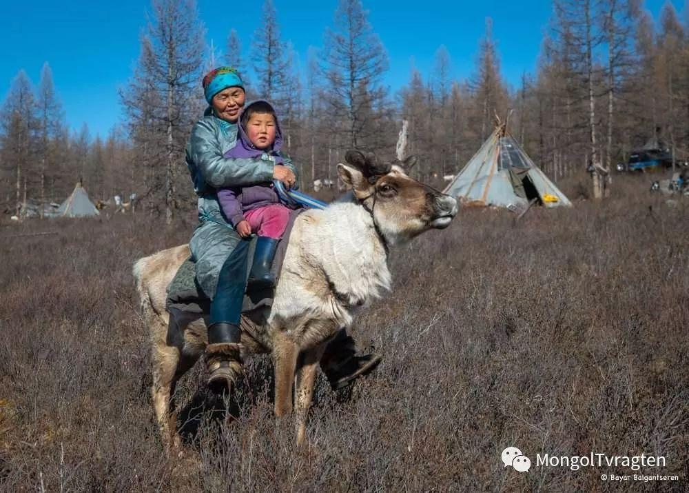 ᠴᠠᠲᠠᠨ ᠢᠷᠭᠡᠳ- ᠪᠠᠶᠠᠷ 第5张 ᠴᠠᠲᠠᠨ ᠢᠷᠭᠡᠳ- ᠪᠠᠶᠠᠷ 蒙古文化