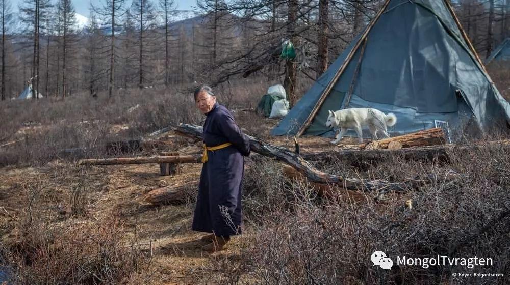 ᠴᠠᠲᠠᠨ ᠢᠷᠭᠡᠳ- ᠪᠠᠶᠠᠷ 第12张 ᠴᠠᠲᠠᠨ ᠢᠷᠭᠡᠳ- ᠪᠠᠶᠠᠷ 蒙古文化
