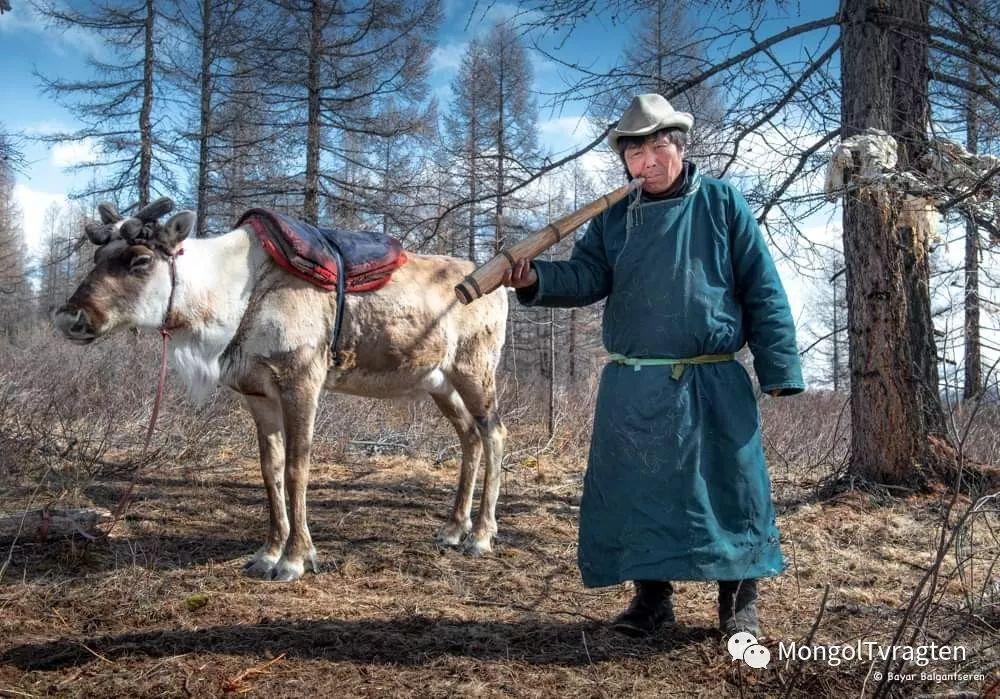 ᠴᠠᠲᠠᠨ ᠢᠷᠭᠡᠳ- ᠪᠠᠶᠠᠷ 第10张 ᠴᠠᠲᠠᠨ ᠢᠷᠭᠡᠳ- ᠪᠠᠶᠠᠷ 蒙古文化