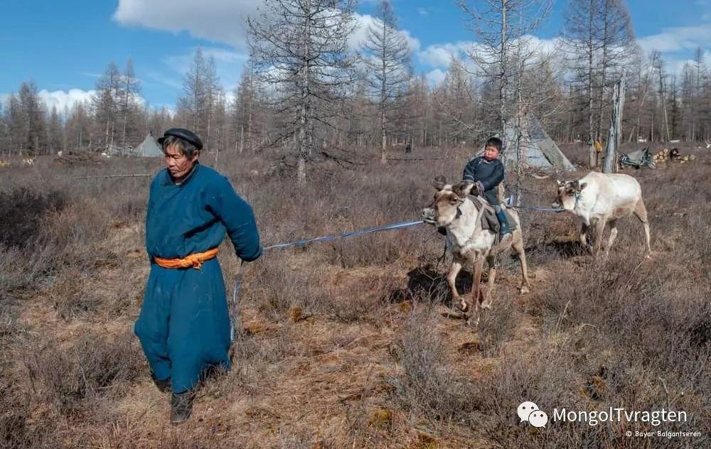 ᠴᠠᠲᠠᠨ ᠢᠷᠭᠡᠳ- ᠪᠠᠶᠠᠷ 第18张 ᠴᠠᠲᠠᠨ ᠢᠷᠭᠡᠳ- ᠪᠠᠶᠠᠷ 蒙古文化
