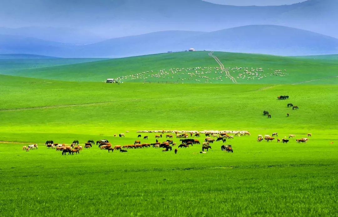 乌珠穆沁草原印记 第2张 乌珠穆沁草原印记 蒙古文化
