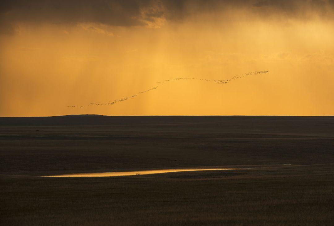 乌珠穆沁草原印记 第17张 乌珠穆沁草原印记 蒙古文化