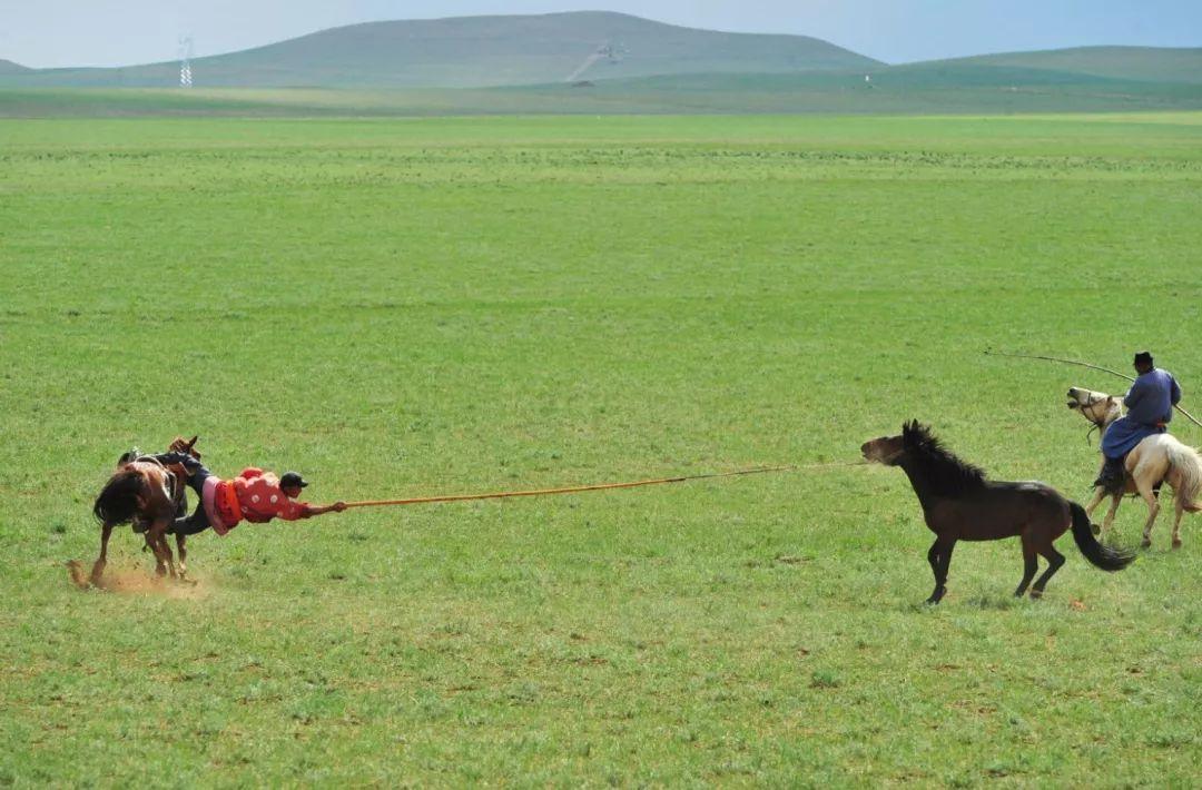 乌珠穆沁草原印记 第19张 乌珠穆沁草原印记 蒙古文化
