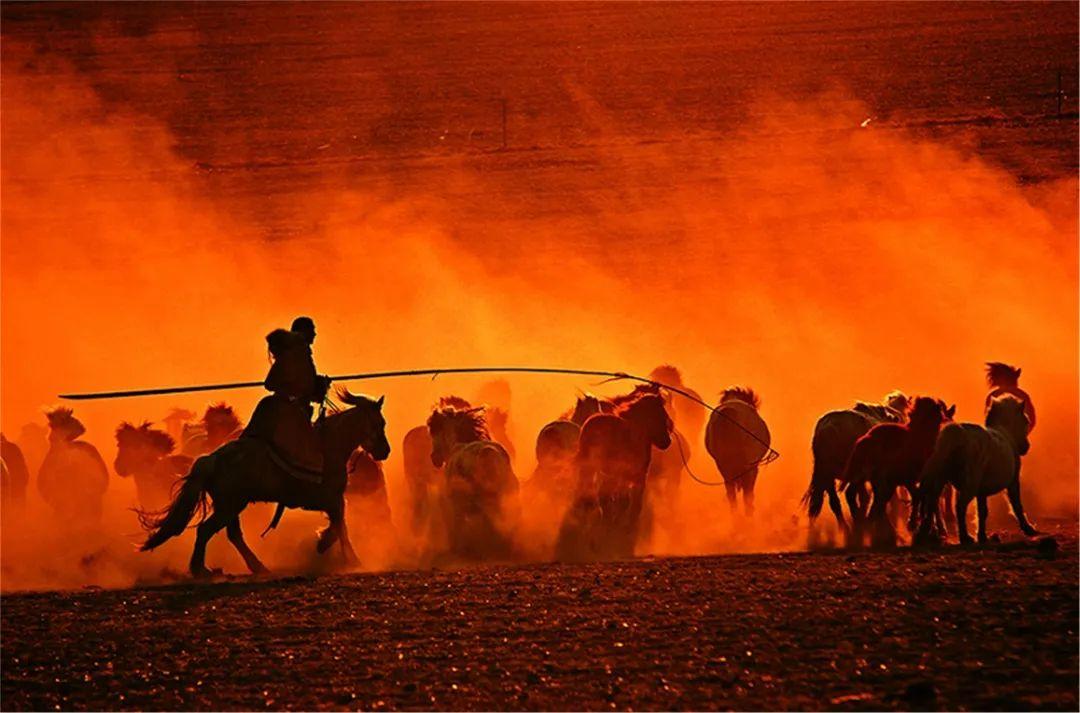 秋天的乌珠穆沁草原,太美了! 第2张 秋天的乌珠穆沁草原,太美了! 蒙古文化