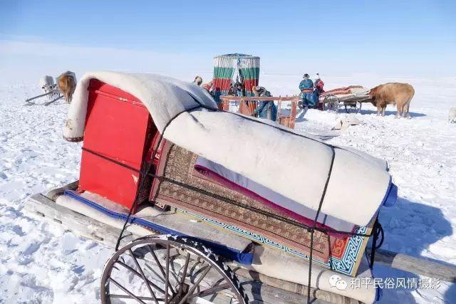 乌珠穆沁草原蒙古族搬家走场全过程 第8张 乌珠穆沁草原蒙古族搬家走场全过程 蒙古文化