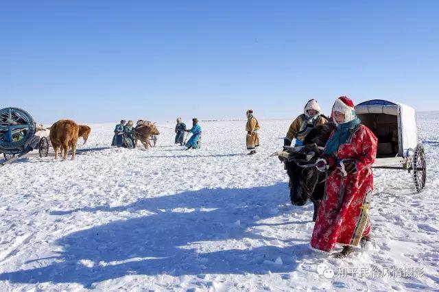乌珠穆沁草原蒙古族搬家走场全过程 第11张 乌珠穆沁草原蒙古族搬家走场全过程 蒙古文化