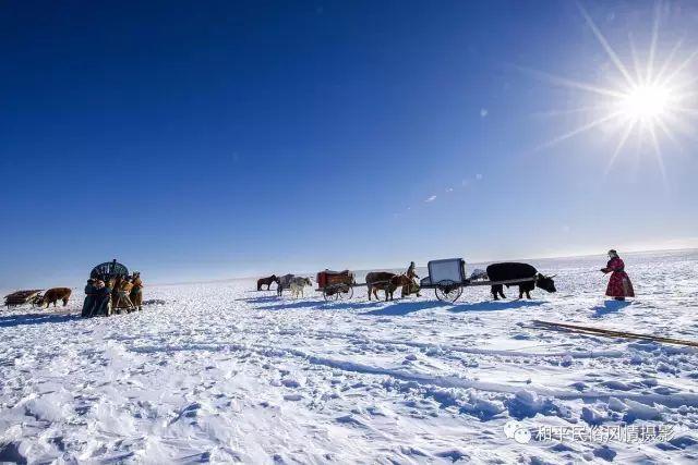 乌珠穆沁草原蒙古族搬家走场全过程 第13张 乌珠穆沁草原蒙古族搬家走场全过程 蒙古文化