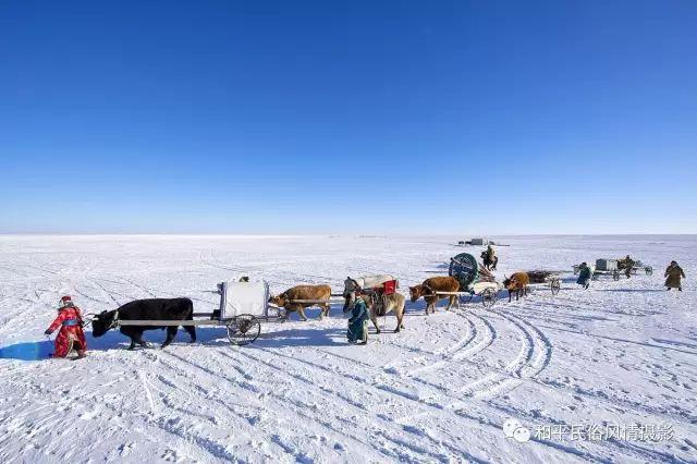 乌珠穆沁草原蒙古族搬家走场全过程 第14张 乌珠穆沁草原蒙古族搬家走场全过程 蒙古文化
