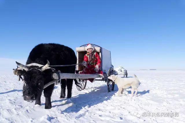 乌珠穆沁草原蒙古族搬家走场全过程 第36张 乌珠穆沁草原蒙古族搬家走场全过程 蒙古文化