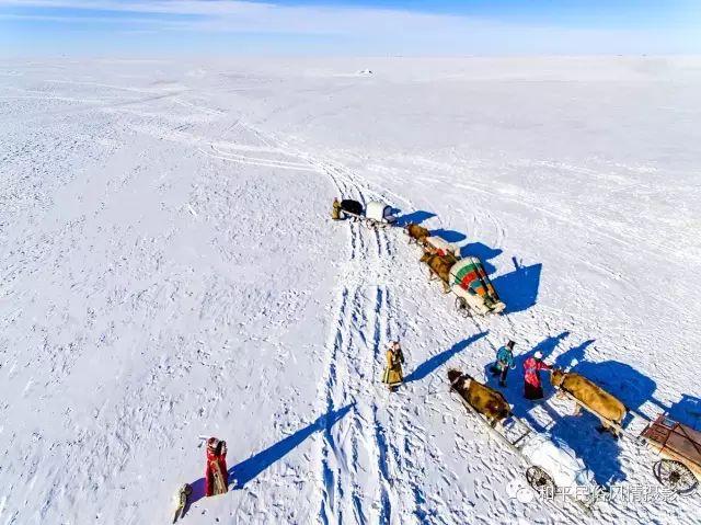 乌珠穆沁草原蒙古族搬家走场全过程 第42张 乌珠穆沁草原蒙古族搬家走场全过程 蒙古文化