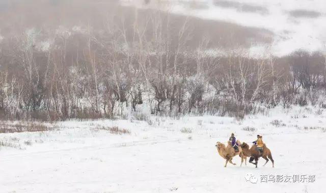 冬天的乌珠穆沁草原、美醉了 第1张 冬天的乌珠穆沁草原、美醉了 蒙古文化