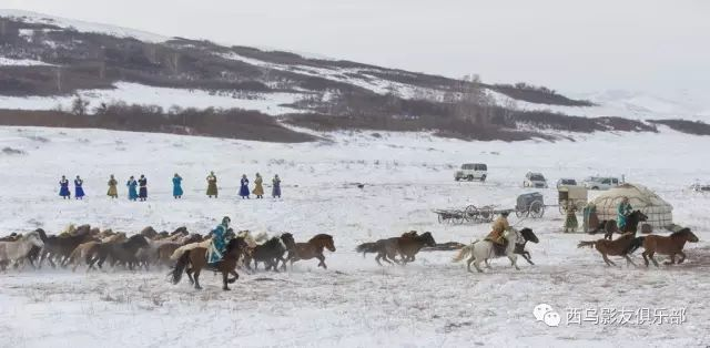 冬天的乌珠穆沁草原、美醉了 第14张 冬天的乌珠穆沁草原、美醉了 蒙古文化