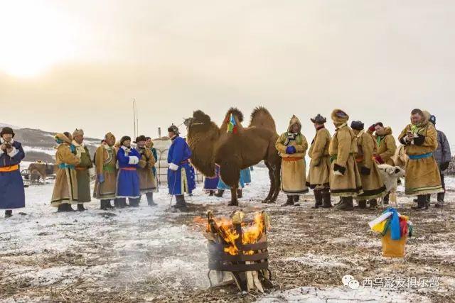 冬天的乌珠穆沁草原、美醉了 第16张 冬天的乌珠穆沁草原、美醉了 蒙古文化