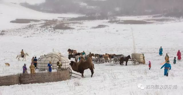 冬天的乌珠穆沁草原、美醉了 第17张 冬天的乌珠穆沁草原、美醉了 蒙古文化