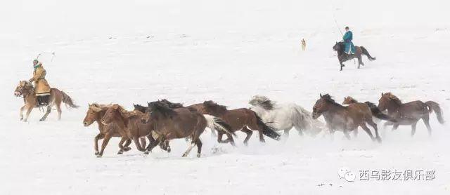 冬天的乌珠穆沁草原、美醉了 第21张 冬天的乌珠穆沁草原、美醉了 蒙古文化