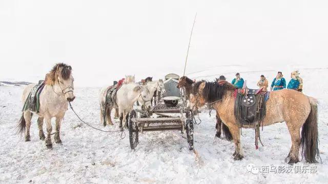 冬天的乌珠穆沁草原、美醉了 第24张 冬天的乌珠穆沁草原、美醉了 蒙古文化