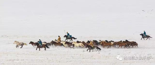 冬天的乌珠穆沁草原、美醉了 第26张 冬天的乌珠穆沁草原、美醉了 蒙古文化
