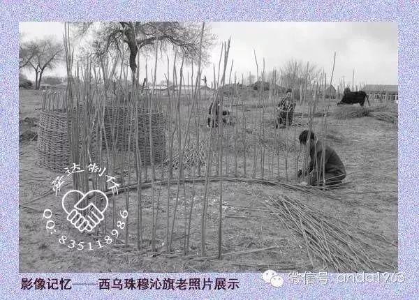 乌珠穆沁由来及老照片 第7张