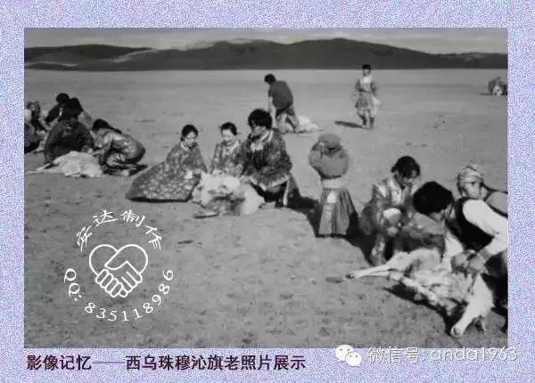 乌珠穆沁由来及老照片 第11张