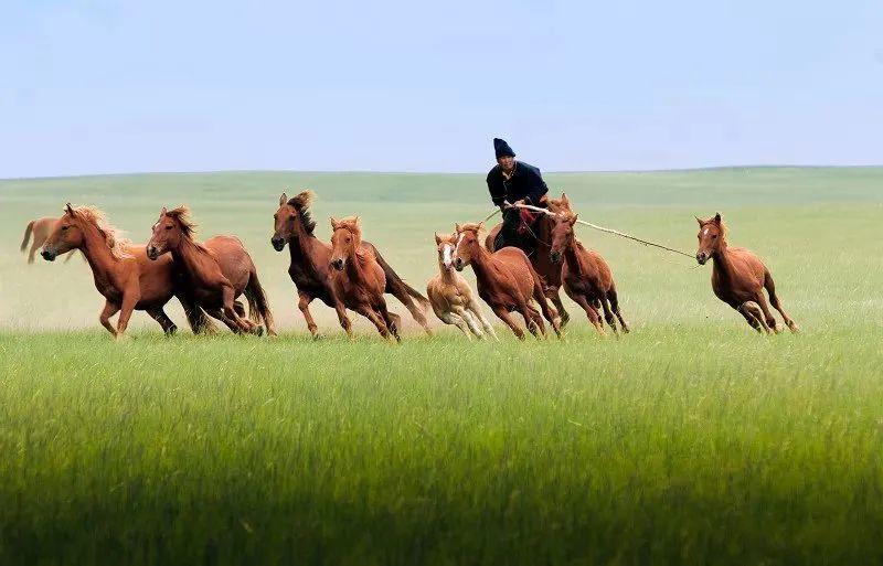 【蒙古历史】带你了解蒙古源流系谱 第5张 【蒙古历史】带你了解蒙古源流系谱 蒙古文化