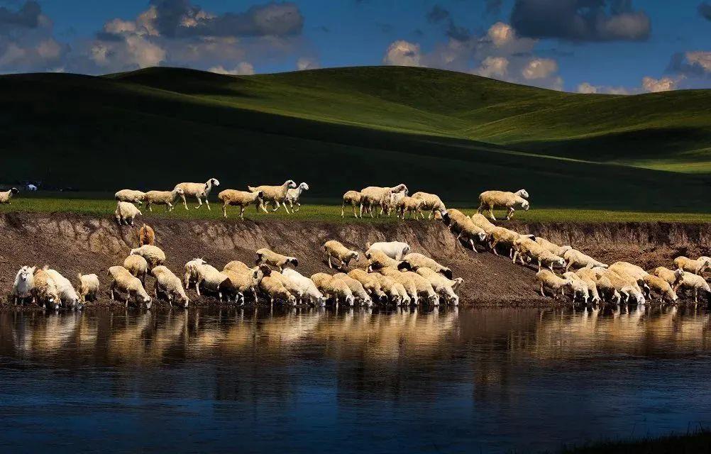 【蒙古历史】带你了解蒙古源流系谱 第11张 【蒙古历史】带你了解蒙古源流系谱 蒙古文化