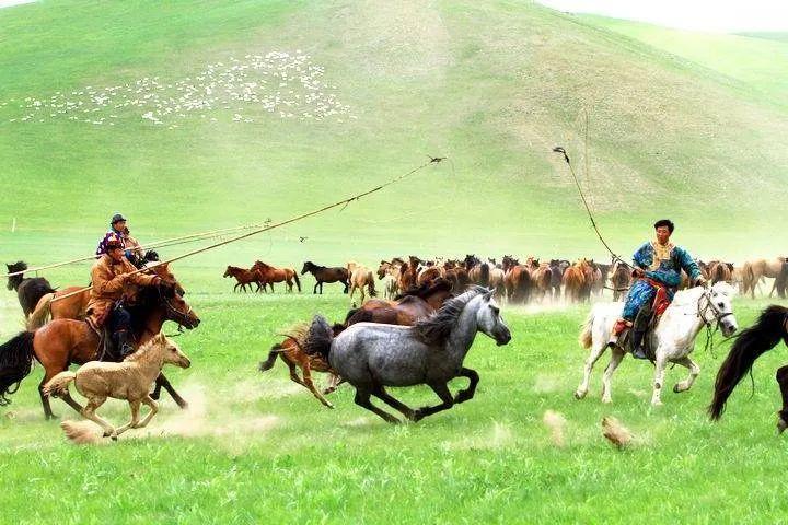 【蒙古历史】带你了解蒙古源流系谱 第14张 【蒙古历史】带你了解蒙古源流系谱 蒙古文化