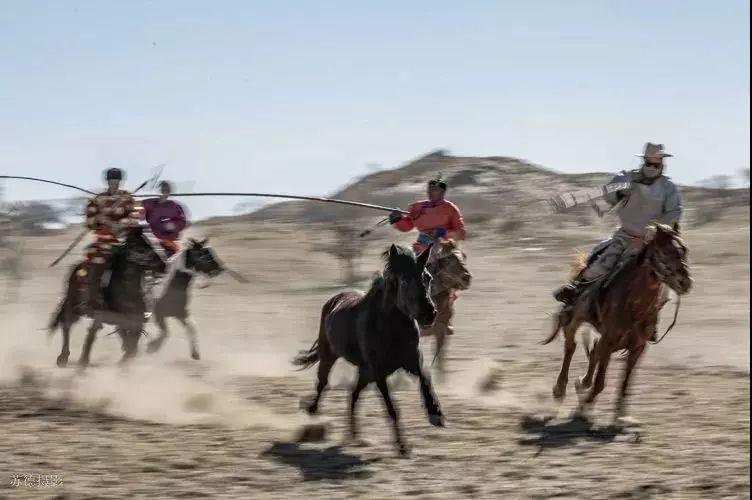 """阿巴嘎""""阿都沁""""马文化那达慕:马背上的文化传承(组图) 第6张"""