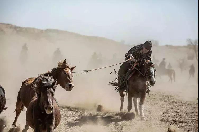 """阿巴嘎""""阿都沁""""马文化那达慕:马背上的文化传承(组图) 第31张"""