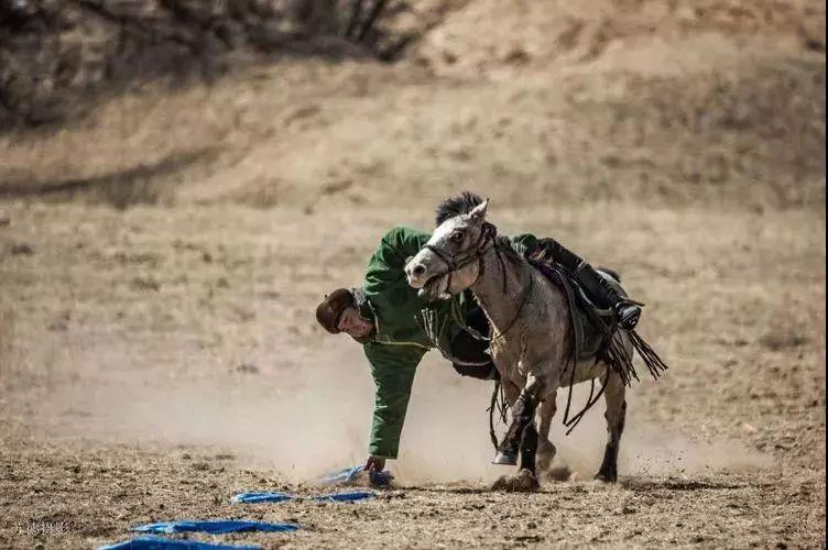 """阿巴嘎""""阿都沁""""马文化那达慕:马背上的文化传承(组图) 第46张"""