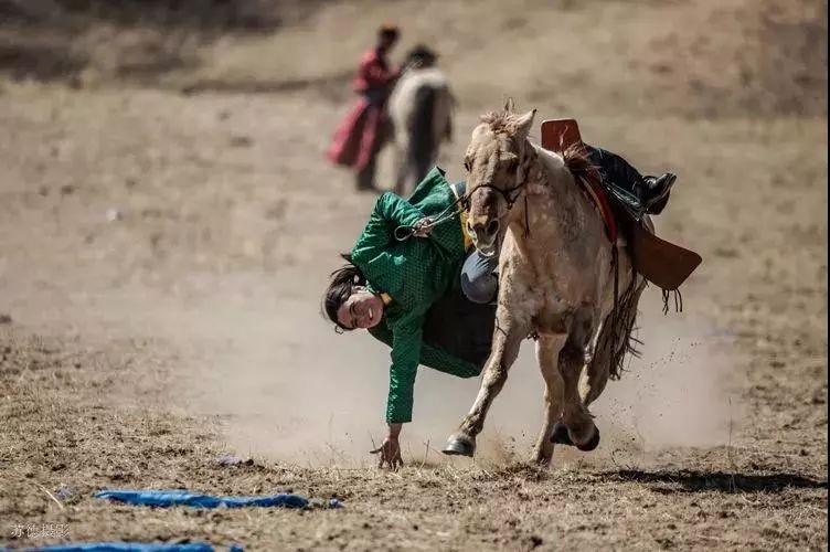 """阿巴嘎""""阿都沁""""马文化那达慕:马背上的文化传承(组图) 第50张"""