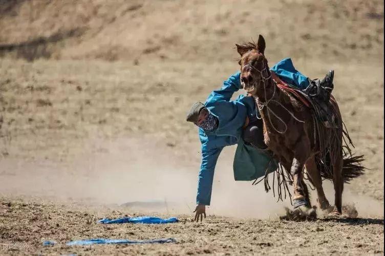 """阿巴嘎""""阿都沁""""马文化那达慕:马背上的文化传承(组图) 第52张"""