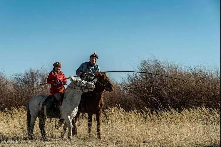 """阿巴嘎""""阿都沁""""马文化那达慕:马背上的文化传承(组图) 第60张"""