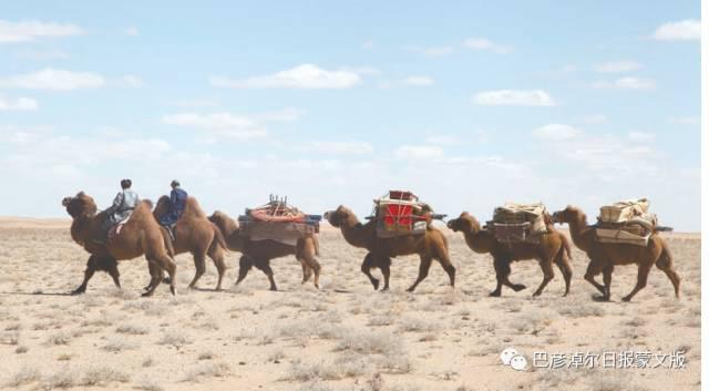 【乌拉特文化与旅游系列报道•一】探索乌拉特迁徙之旅 第8张