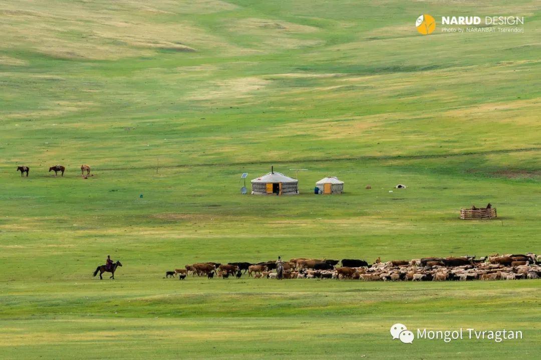 ᠮᠣᠩᠭᠤᠯ ᠰᠡᠭᠦᠳᠡᠷ- ᠴ᠂ ᠨᠠᠷᠠᠨᠪᠠᠲᠤ 第13张 ᠮᠣᠩᠭᠤᠯ ᠰᠡᠭᠦᠳᠡᠷ- ᠴ᠂ ᠨᠠᠷᠠᠨᠪᠠᠲᠤ 蒙古文化