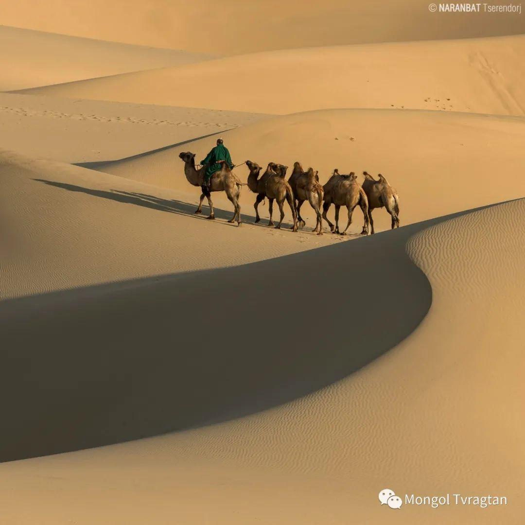 ᠮᠣᠩᠭᠤᠯ ᠰᠡᠭᠦᠳᠡᠷ- ᠴ᠂ ᠨᠠᠷᠠᠨᠪᠠᠲᠤ 第18张 ᠮᠣᠩᠭᠤᠯ ᠰᠡᠭᠦᠳᠡᠷ- ᠴ᠂ ᠨᠠᠷᠠᠨᠪᠠᠲᠤ 蒙古文化