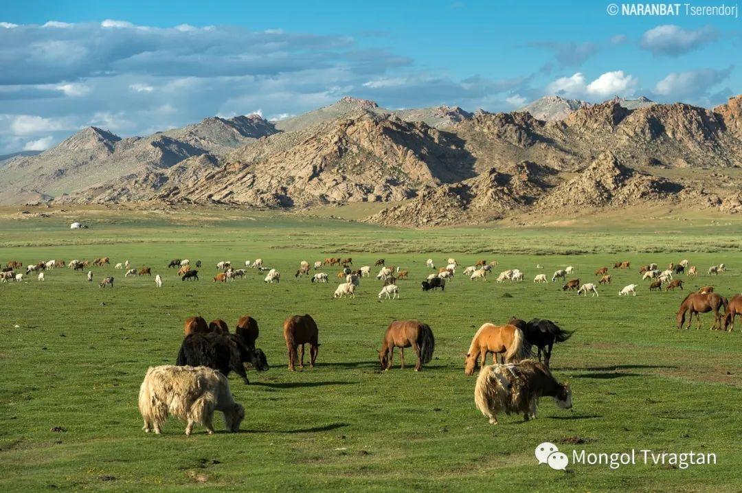 ᠮᠣᠩᠭᠤᠯ ᠰᠡᠭᠦᠳᠡᠷ- ᠴ᠂ ᠨᠠᠷᠠᠨᠪᠠᠲᠤ 第23张 ᠮᠣᠩᠭᠤᠯ ᠰᠡᠭᠦᠳᠡᠷ- ᠴ᠂ ᠨᠠᠷᠠᠨᠪᠠᠲᠤ 蒙古文化