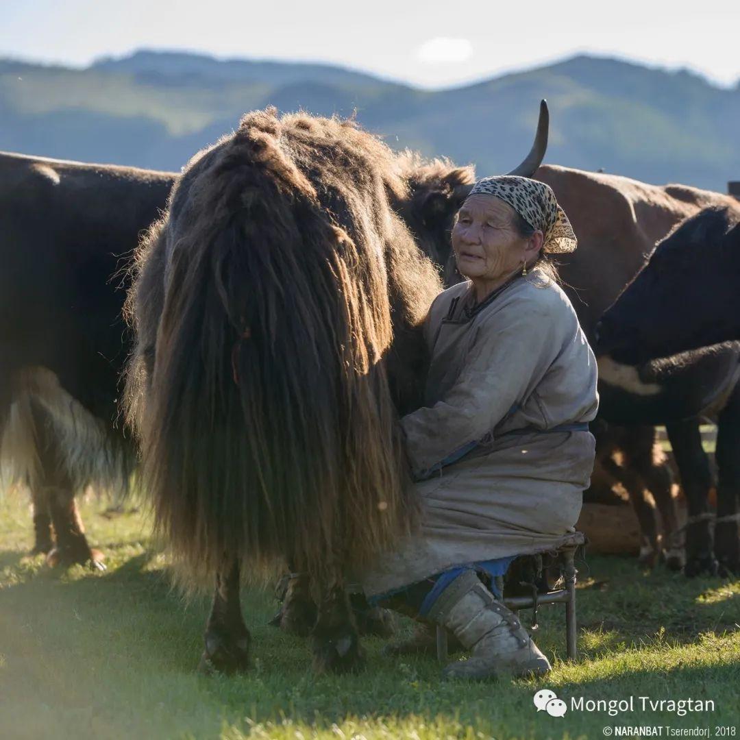 ᠮᠣᠩᠭᠤᠯ ᠰᠡᠭᠦᠳᠡᠷ- ᠴ᠂ ᠨᠠᠷᠠᠨᠪᠠᠲᠤ 第46张 ᠮᠣᠩᠭᠤᠯ ᠰᠡᠭᠦᠳᠡᠷ- ᠴ᠂ ᠨᠠᠷᠠᠨᠪᠠᠲᠤ 蒙古文化