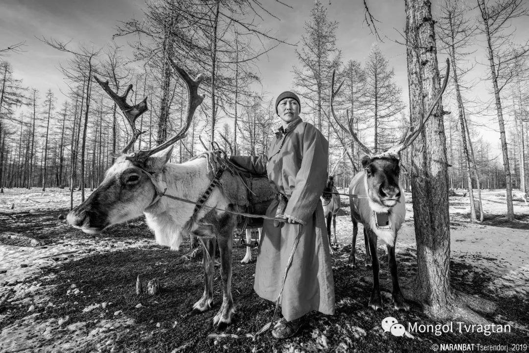 ᠮᠣᠩᠭᠤᠯ ᠰᠡᠭᠦᠳᠡᠷ- ᠴ᠂ ᠨᠠᠷᠠᠨᠪᠠᠲᠤ 第7张 ᠮᠣᠩᠭᠤᠯ ᠰᠡᠭᠦᠳᠡᠷ- ᠴ᠂ ᠨᠠᠷᠠᠨᠪᠠᠲᠤ 蒙古文化