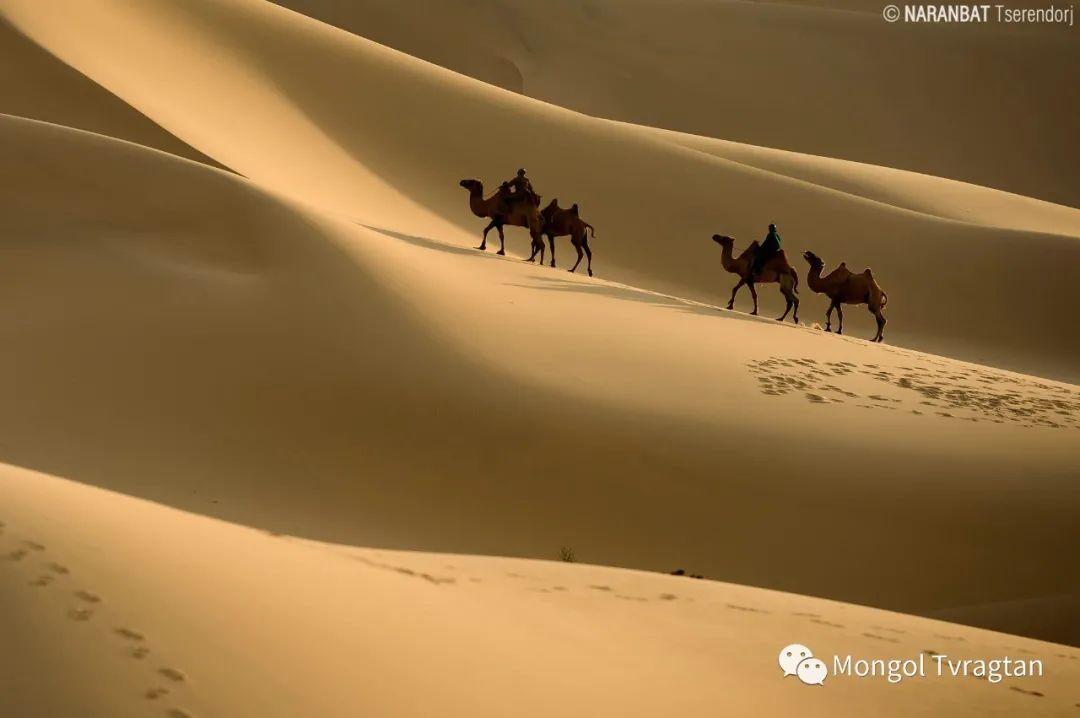 ᠮᠣᠩᠭᠤᠯ ᠰᠡᠭᠦᠳᠡᠷ- ᠴ᠂ ᠨᠠᠷᠠᠨᠪᠠᠲᠤ 第36张 ᠮᠣᠩᠭᠤᠯ ᠰᠡᠭᠦᠳᠡᠷ- ᠴ᠂ ᠨᠠᠷᠠᠨᠪᠠᠲᠤ 蒙古文化