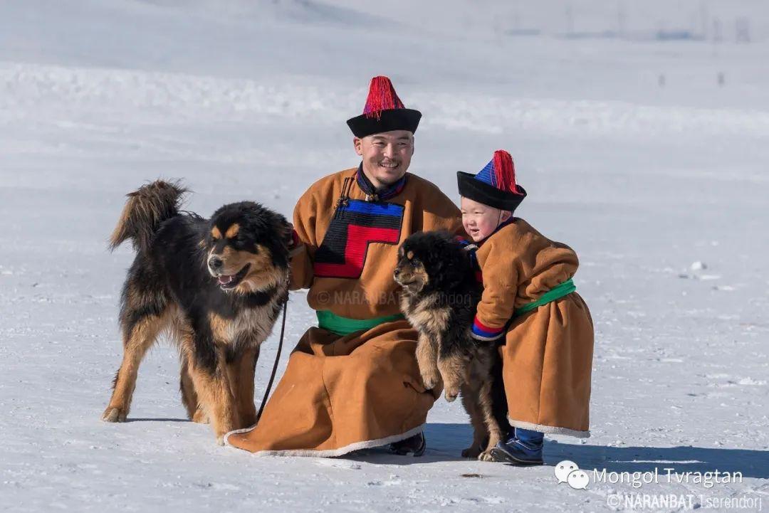 ᠮᠣᠩᠭᠤᠯ ᠰᠡᠭᠦᠳᠡᠷ- ᠴ᠂ ᠨᠠᠷᠠᠨᠪᠠᠲᠤ 第42张 ᠮᠣᠩᠭᠤᠯ ᠰᠡᠭᠦᠳᠡᠷ- ᠴ᠂ ᠨᠠᠷᠠᠨᠪᠠᠲᠤ 蒙古文化